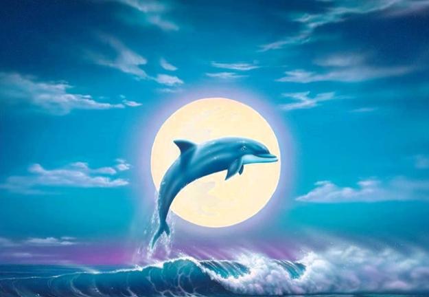 La Era del Delfín